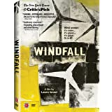Windfall [Import]by Laura Israel