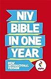 NIV Alpha Bible In One Year (Bible Niv)