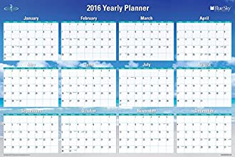 "Blue Sky 2016 Horizontal & Vertical Laminated Planner, 36"" x 24"", Endless Summer (17655-W)"