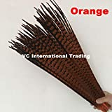 Maslin Factory Sales! 200pcs Dyed Orange Color Ringneck Pheasant Feathers 70-75cm Long Chicken Tail Feathers - (Color: 45-50cm 200pc) (Color: 45-50cm 200pc)