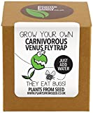 Plants From Seed Grow Your Own Venus Fly Trap Kit