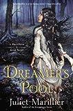Dreamer's Pool: A Blackthorn & Grim Novel