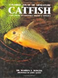 Atlas of Miniature Catfish Warren E. Burgess