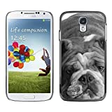 All Phone Most Case / Hard PC Metal piece Shell Slim Cover Protective Case for Samsung Galaxy S4 I9500 English Bulldog Gray Black White Dog