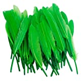 Nsstar Home Decor Decoration Goose Feather (Green)