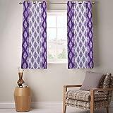 Fabutex Beautiful printed Window Curtain Pack of 2
