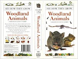 See How They Grow Videos: Woodland Animals: 9780751351057 ...