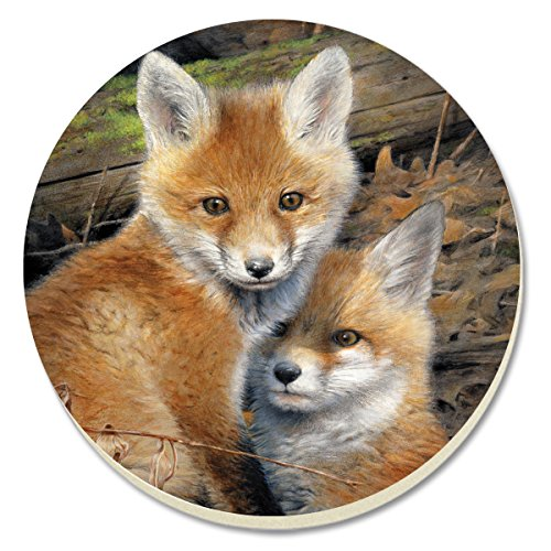 CounterArt Fox Brothers Absorbent Coasters, Set of 4