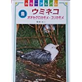 ウミネコ―オオセグロカモメ・ユリカモメ (カラーアルバム鳥)