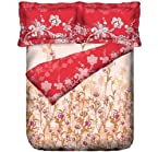 Red Bedsheet Sets & Comforter