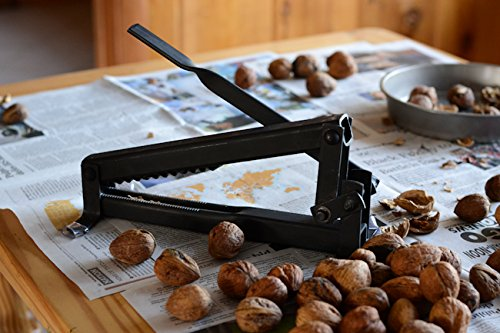 Walnut Saw - The easy way to get large kernels from black