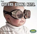 Baby Memes 2015 Wall Calendar