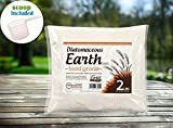 DiatomaceousEarth 2 lb Food Grade Diatomaceous Earth DE with Scoop