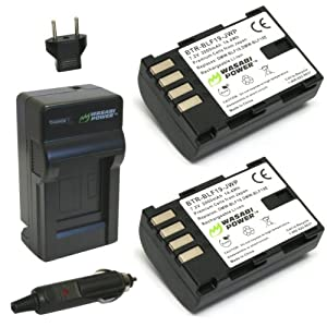Wasabi Power Battery (2-Pack) and Charger for Panasonic DMW-BLF19 and Panasonic Lumix DMC-GH3
