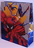 "Marvel Heroes - SpiderMan: ""Climbing"" Foil Gift Bag"
