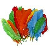 約50pcs 染めニューギニア羽根  装飾用の羽根 12-18 cm DIY ジュエリー/工芸品/ヘアアクセサリー 混合色