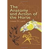 The Anatomy and Action of the Horse (Dover Anatomy for Artists)by Lowes Dalbiac Luard