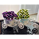 TiedRibbons® Cycle Shape Flower Vase With Flower Bunches(Set Of 2)