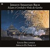 Sonates pour viole de gambe et clavecin bwv 1023, 1027-1029
