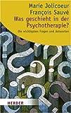 Was geschieht in der Psychotherapie?: Die wichtigsten Fragen und Antworten (HERDER spektrum)