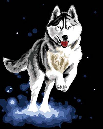Wooden Framed No Mixing / No Blending Canvas - Husky Dog