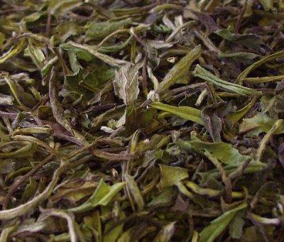 Pai Mu Tan, Weisser Tee; von Ballhause time for tea e.K. bei Gewürze Shop