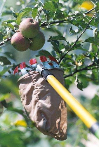 Connex-FLOR78215-Raccoglitore-per-frutta-con-corona-di-raccolta-rivestita-in-plastica