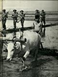 China, Burma and India- WWII