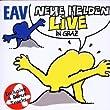 Neue Helden Braucht das Land - Live in Graz