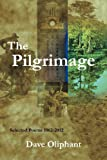 img - for The Pilgrimage book / textbook / text book