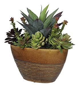 Amazon.com: Artificial Succulent Garden in Ridged Oval Ceramic ...
