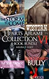 Hearts Aflame Collection VI: 4-Book Bundle