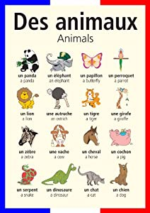 A3 French poster teaching aid / classroom resources - Animals/Des ...