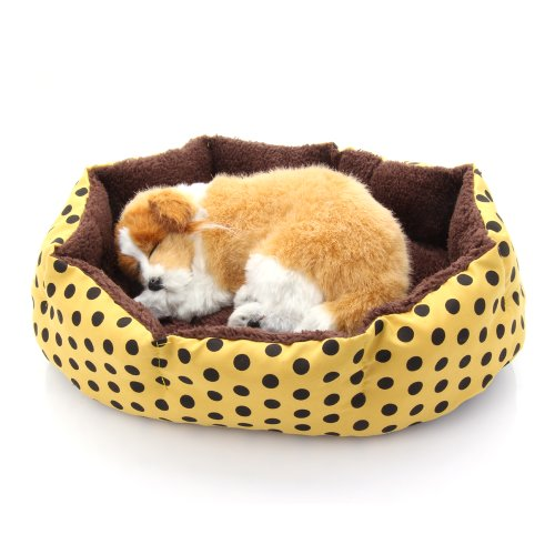 Soft Dog House front-719960