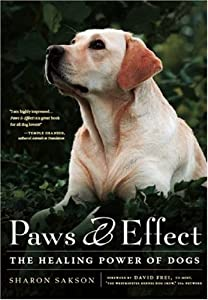 Paws Effect The Healing Power Of Dogs by Alyson Books