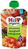 Hipp Organic Scrummy Spaghetti Bolognese Pouch Stage 2-7 Months 100 g (Pack of 10)