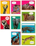 Assorted 9-Pack Animal Box Set All Occasion National Geographic Greeting Cards Bulk with Tiger, Elephant, Giraffe, Cheetah, Monkey & More for Her for Him