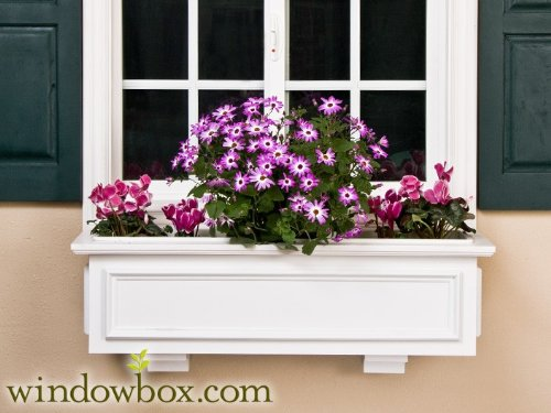 XL Paloma Direct Mount Window Box w/ 2 Free XL Decorative Faux Brackets - 24 Inch