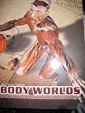 img - for Body Worlds The Anatomical Exhibition of Real Human Bodies book / textbook / text book