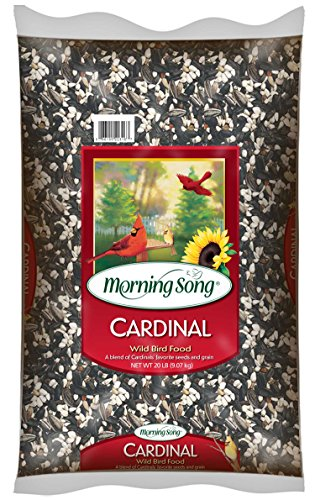 Morning Song 11341 Cardinal Wild Bird Food, 20-Pound (Morning Song Sunflower Seeds compare prices)
