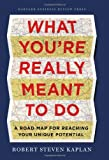 What Youre Really Meant to Do: A Road Map for Reaching Your Unique Potential