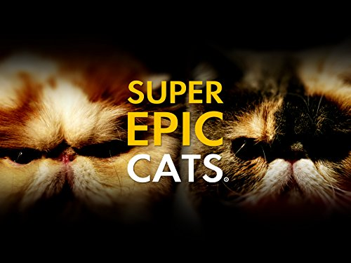 Super Epic Cats on Amazon Prime Instant Video UK
