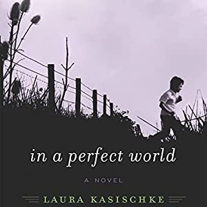 In a Perfect World Audiobook