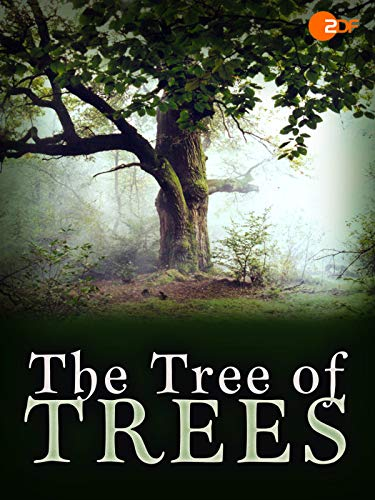 The Tree of Trees on Amazon Prime Video UK