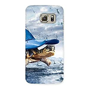 Cute Wow Turtle Multicolor Back Case Cover for Samsung Galaxy S6 Edge Plus