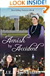 Amish by Accident