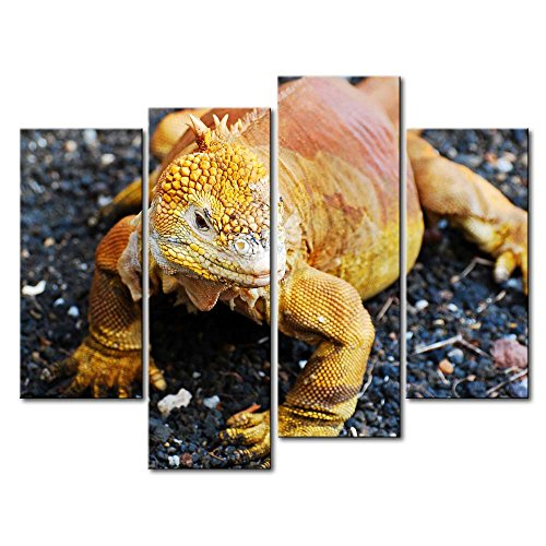 4 Panel Wall Art Painting Golden Galapagos Land Iguana Pictures Prints On Canvas Animal The Picture Decor Oil For Home Modern Decoration Print For Boys Bedroom