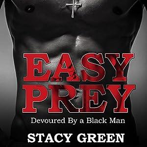 Easy Prey Audiobook