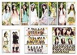 SKE48 キャラポスコレクション BOX