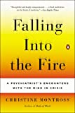 Falling Into the Fire: A Psychiatrists Encounters with the Mind in Crisis